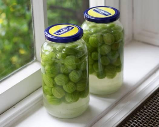 Подборка рецептов компота из крыжовника: от классики до освежающего мохито