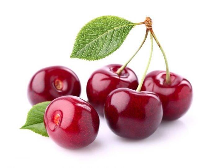 Описание сорта вишни ашинская и характеристики плодоношения, посадка и уход