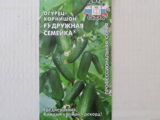 Огурцы корнишоны – лучшие сорта для теплиц