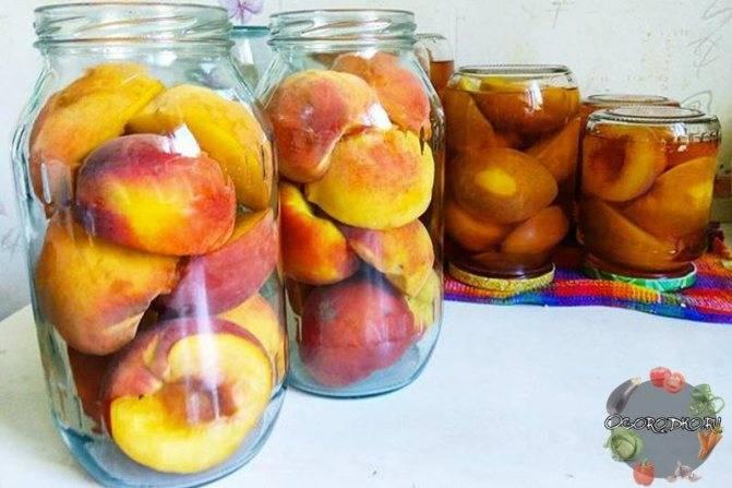 Компот из абрикосов и слив на зиму