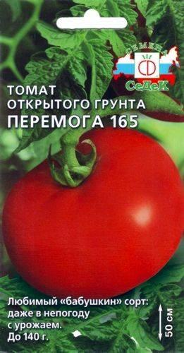 Томат толстушка: характеристика и описание сорта, урожайность с фото