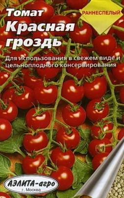 Характеристика, особенности, достоинства сорта томата «сладкая гроздь»