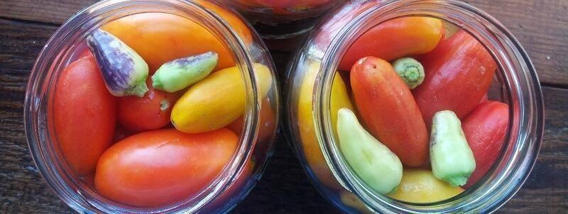 Рецепты маринованных помидоров с фото на зиму – пальчики оближешь