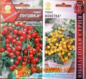 Практическое руководство, как выращивать хорошие помидоры и огурцы в квартире на балконе