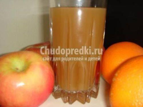 Простой рецепт сока из слив на зиму в домашних условиях