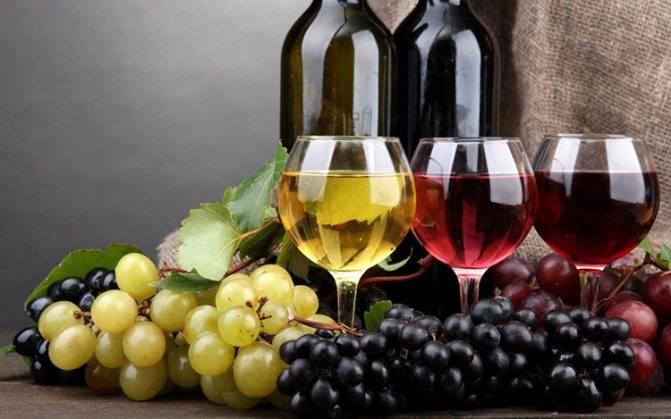 Вино из арбуза в домашних условиях