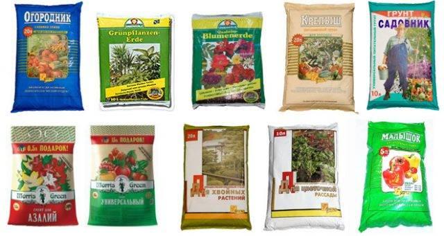 Советы по подготовке правильного грунта для выращивания томатов