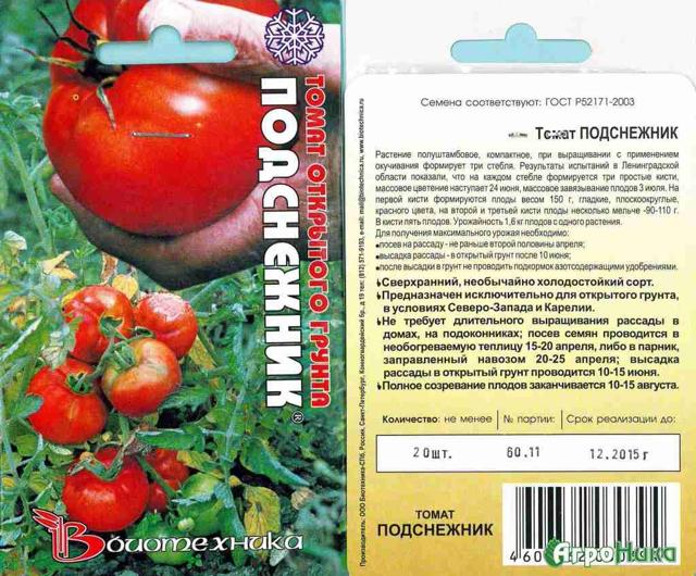Подробный обзор томата подснежник и правила его выращивания