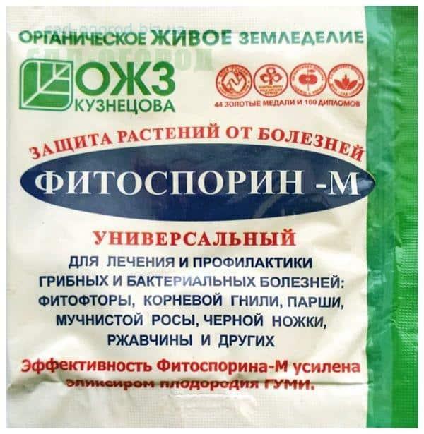 Обработка почвы фитоспорином, применение для комнатных цветов