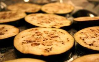 Сушеные баклажаны на зиму: тонкости процесса