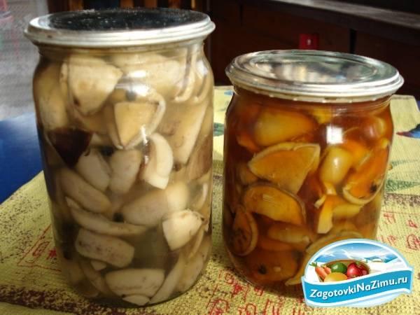 Срок и условия хранения соленых грибов
