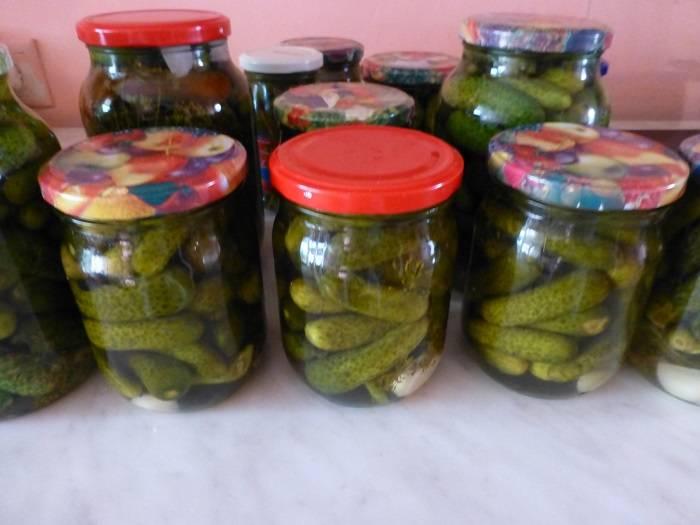 10 рецептов соленых огурцов в банках для хранения в квартире