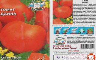 Все самые известные сорта помидор 1000 и 1