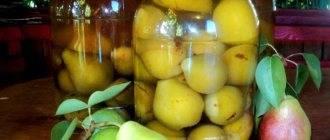 Рецепт приготовления алычи жёлтой на зиму
