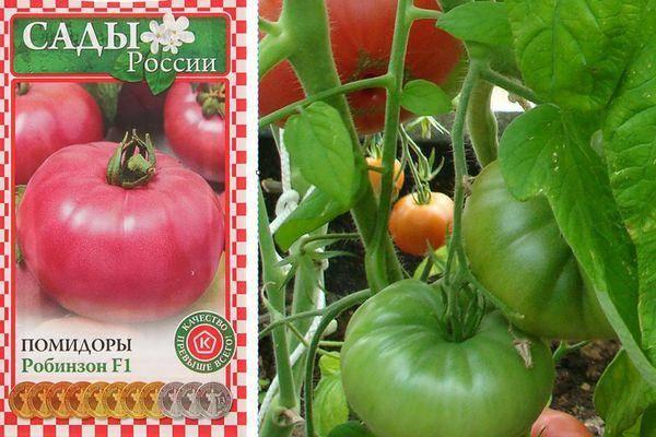 Описание сорта томата красный буйвол, особенности выращивания и урожайность