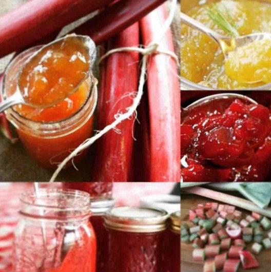 Варенье из ревеня: быстрые и вкусные рецепты