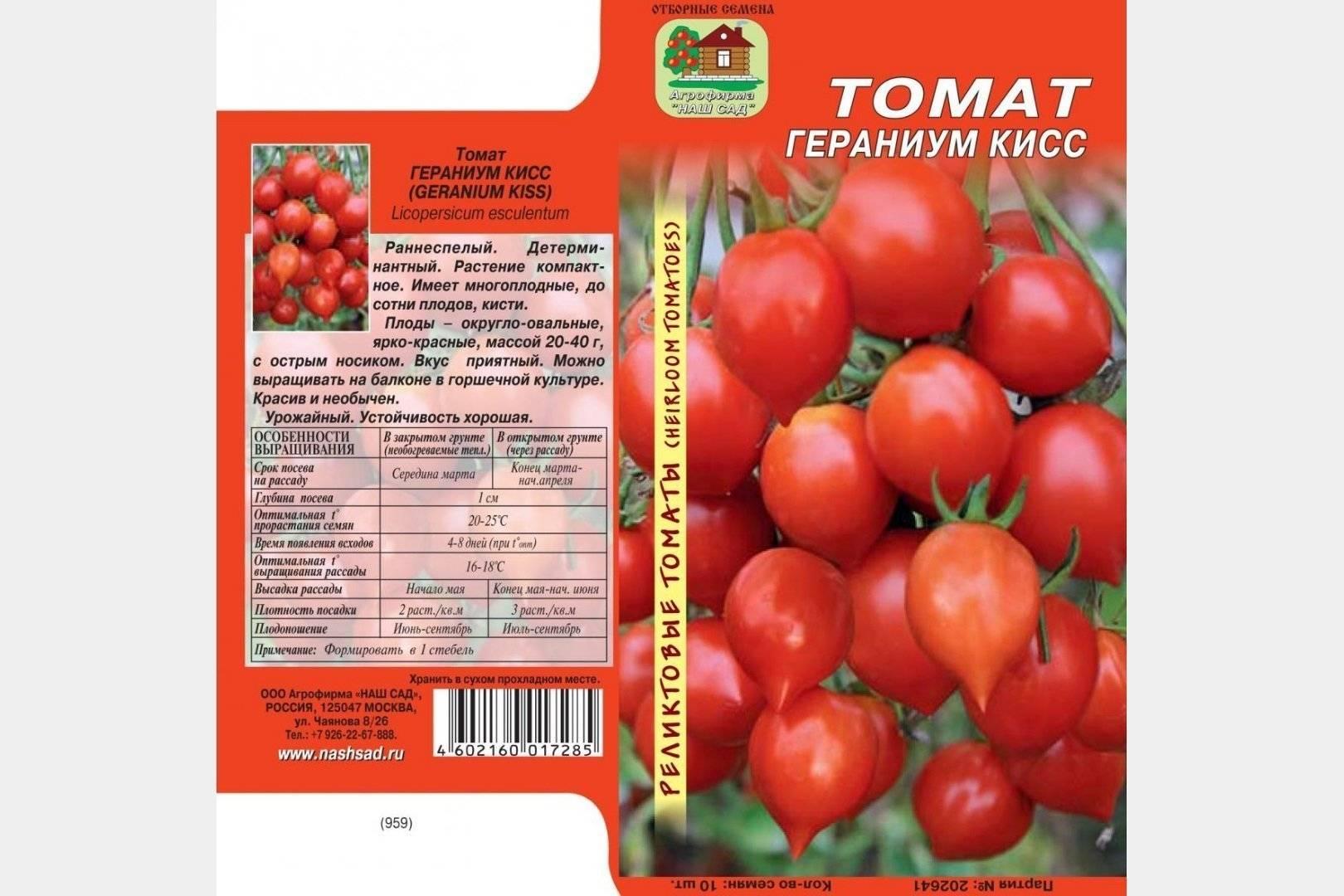 Описание и характеристики сорта томата поцелуй герани, его урожайность
