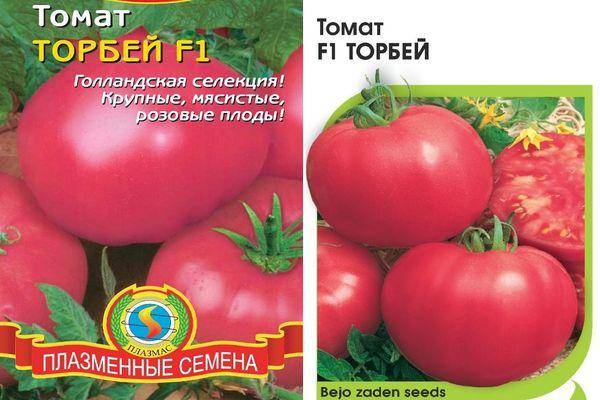 Голландский гибрид — томат «торбей»