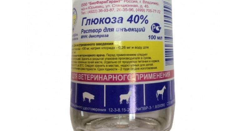 Содержимое аптечки для цыплят и инструкция по применению препаратов