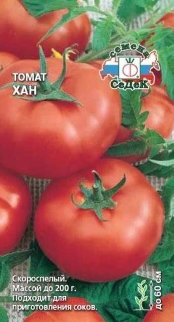 Отличный выбор для тех, кто хочет получить богатый ранний урожай отличных помидоров — томат «богата хата f1»