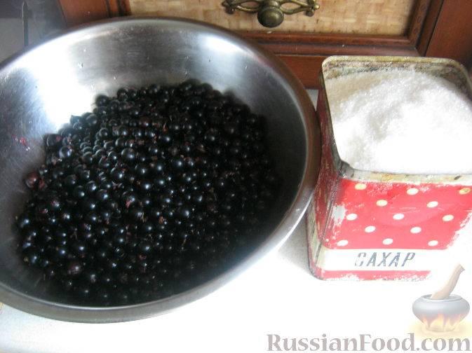 Топ 18 простых рецептов заготовок смородины белой на зиму
