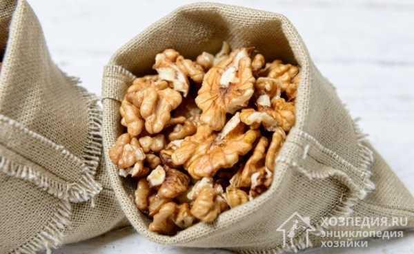 Как хранить грецкие орехи – оптимальные условия и допустимые сроки