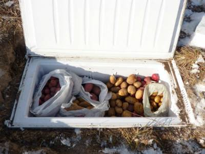 Подготовка погреба (подвала) к хранению