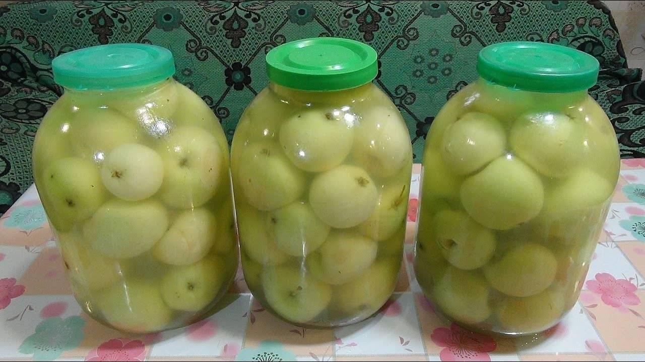 Рецепты приготовления моченых яблок на зиму в домашних условиях в банках