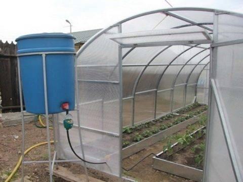 Как построить автоматический полив в теплице своими руками