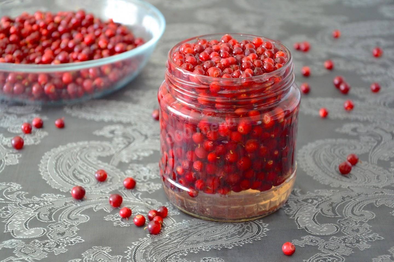 Топ 7 рецептов приготовления джема из брусники на зиму