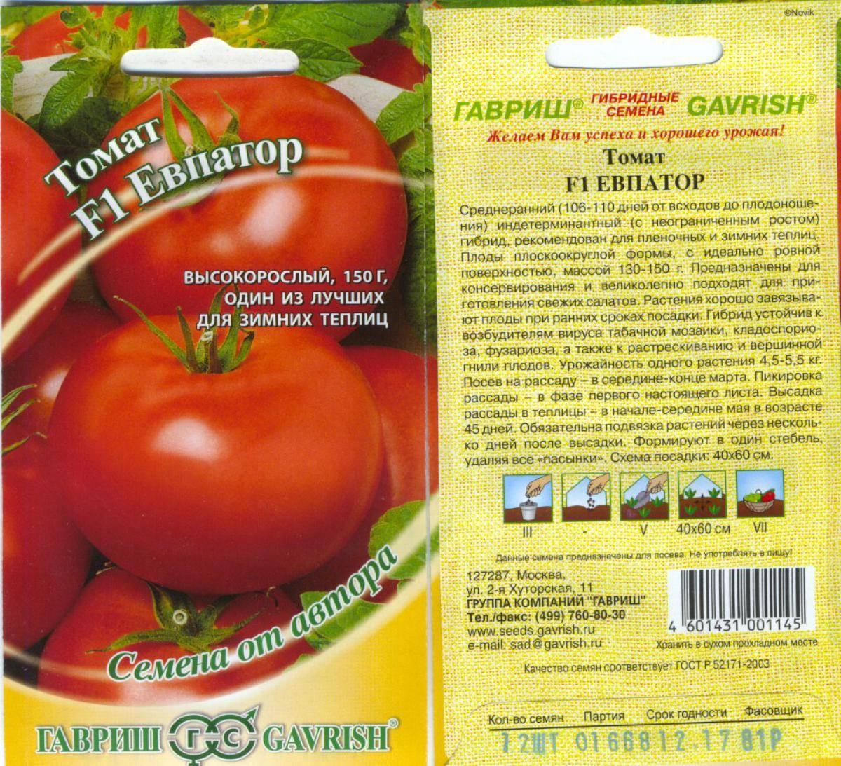 Гибрид евпатор из царства томатов