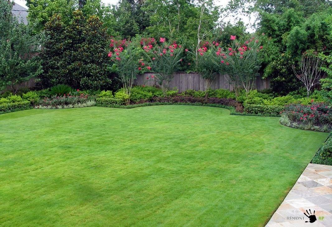 Особенности посева травы, вытесняющей сорняки с газона