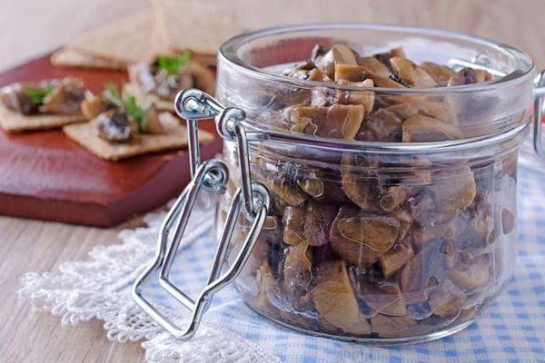 Как сохранить грибы на зиму: лучшие способы и советы