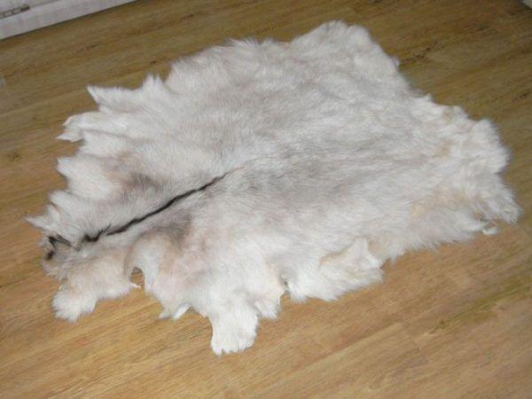Как выделать шкуру овцы в домашних условиях?