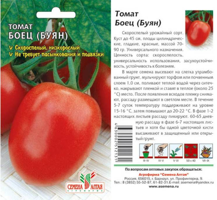 Описание уральского томата ни забот, ни хлопот, достоинства холодостойкого сорта
