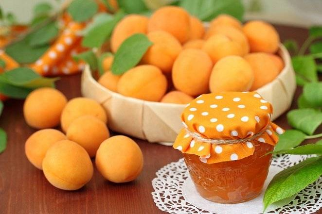 Варенье из абрикосов без косточек: классические рецепты на зиму