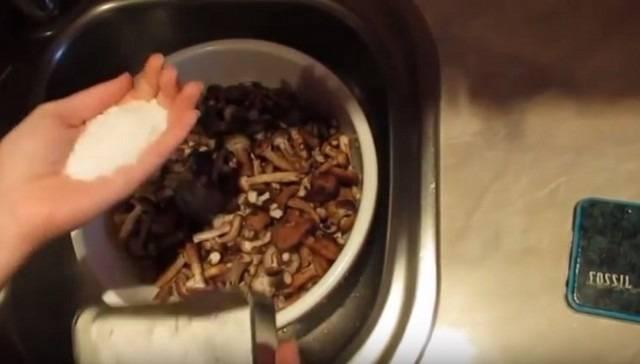 Как вкусно и быстро засолить рыжики в домашних условиях