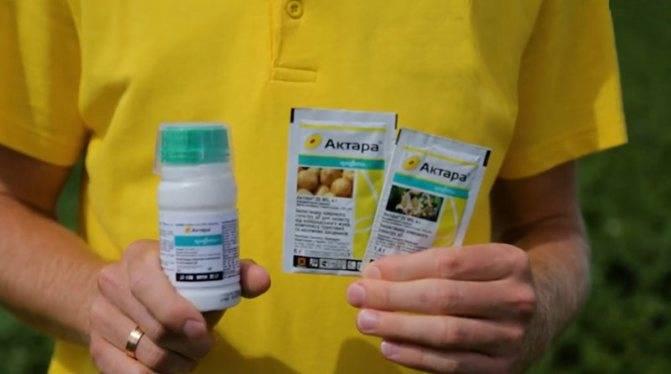 Актара для огурцов в теплице: инструкция по применению