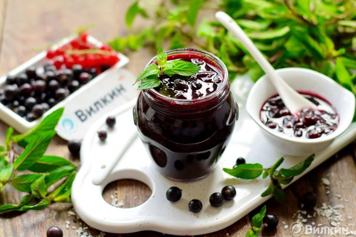 Желе из черной смородины — 8 простых рецептов