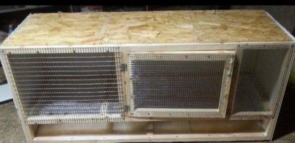 Строительство брудера для цыплят своими руками