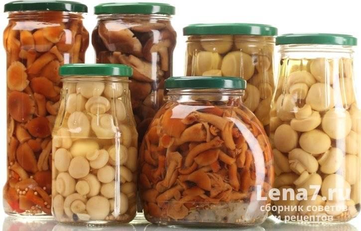 Как хранить соленые грибы в домашних условиях. тонкости и хитрости гранения солёных грибов: закатанных в банки или без закатки