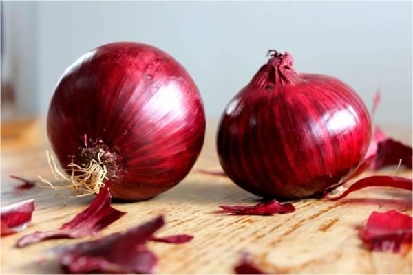 10 самых популярных видов лука для грядки и клумбы