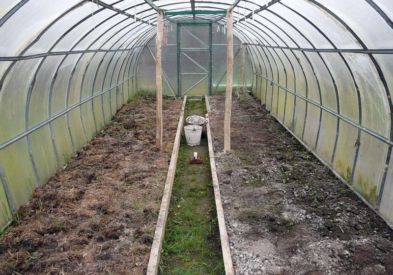 Как подготовить землю в теплице для посадки помидоров