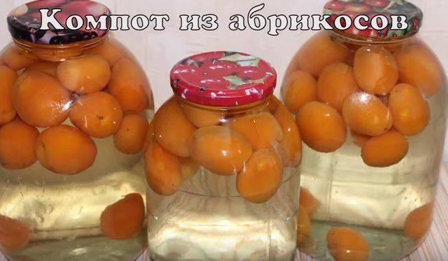 Приготовление вкусного компота из персиков на зиму — 6 лучших рецептов