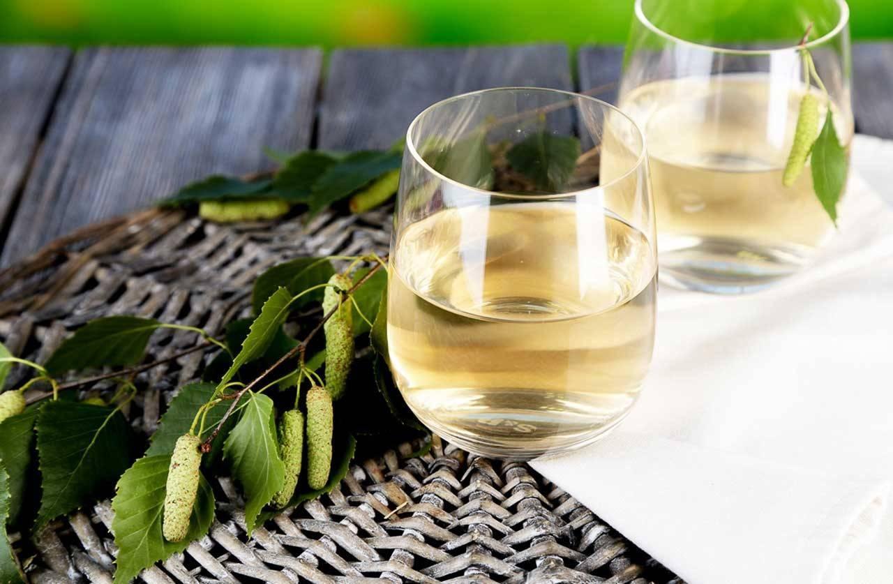 Рецепты приготовления наливок, настоек и домашнего вина из различных ягод
