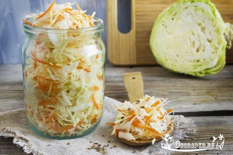 Тушеная свежая и квашеная капуста вместе — 5 пошаговых рецепта