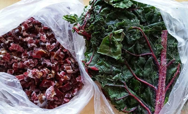 Лучшие рецепты заморозки зеленого чеснока на зиму