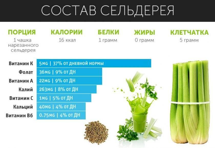 Как сохранить сельдерей на зиму, заготовка витаминов в домашних условиях