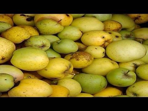 Топ 4 простых рецепта приготовления варенья из яблок и бананов на зиму