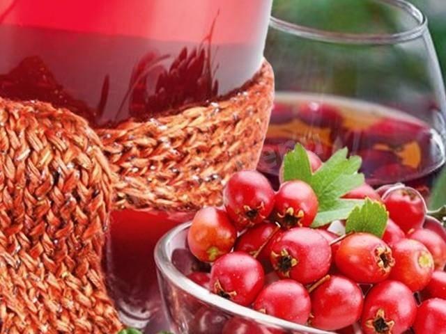 Простые рецепты домашнего вина из боярышника